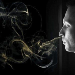 رابطه حس بویایی و حافظه در تشخیص نوع عطر و ادکلن